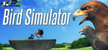 Bird Simulator download