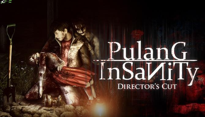 Pulang Insanity Directors Cut Cover